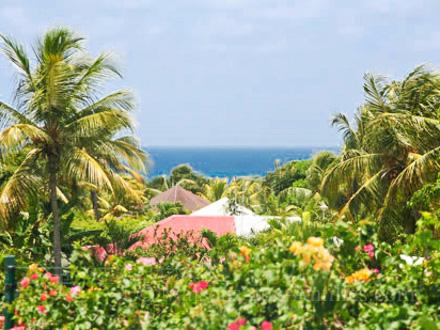 Villa piscine priv e beau jardin tropical fruitier for Au jardin tropical guadeloupe
